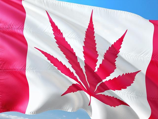 legal-cannabis-retailers-canada